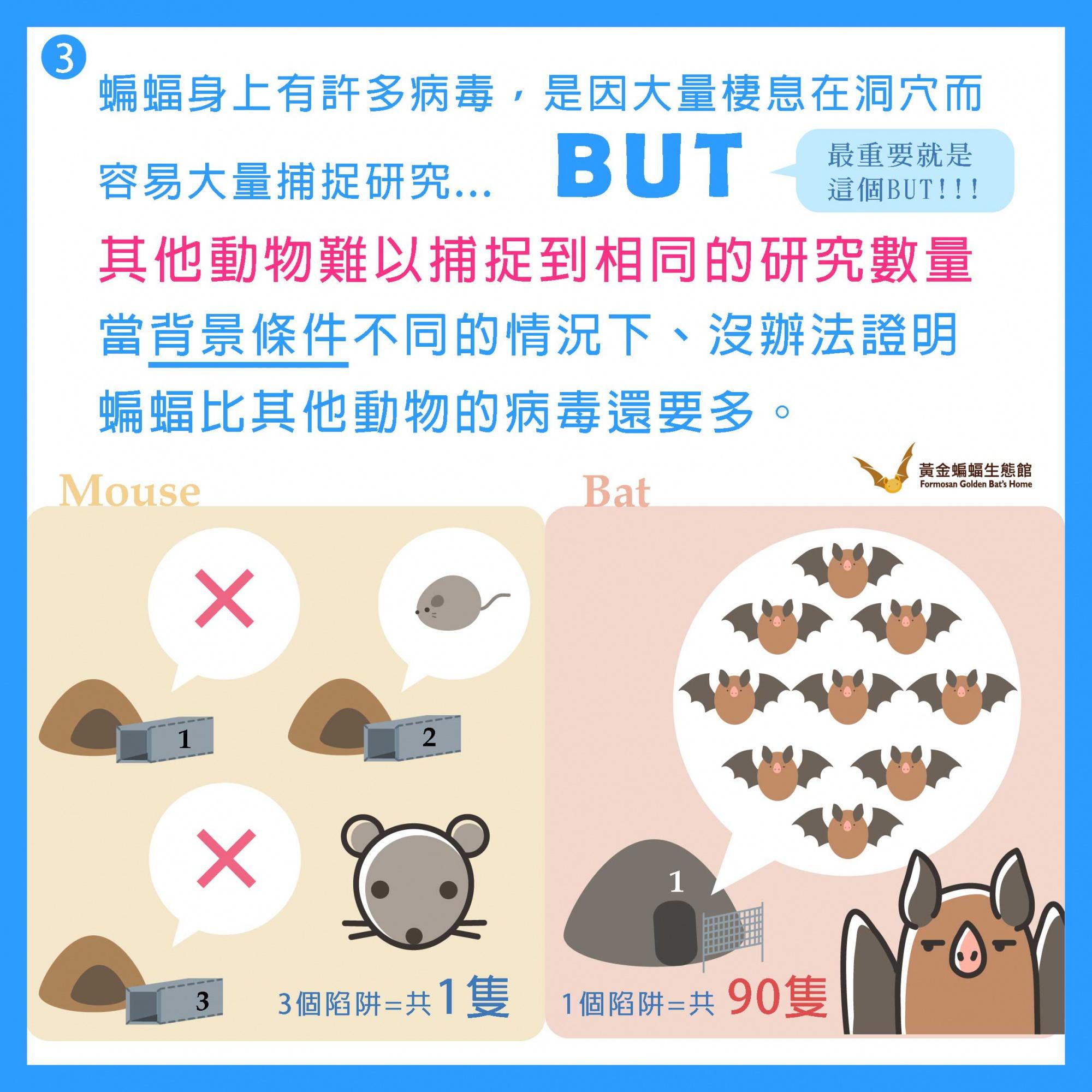 懶人包2 (4).jpg