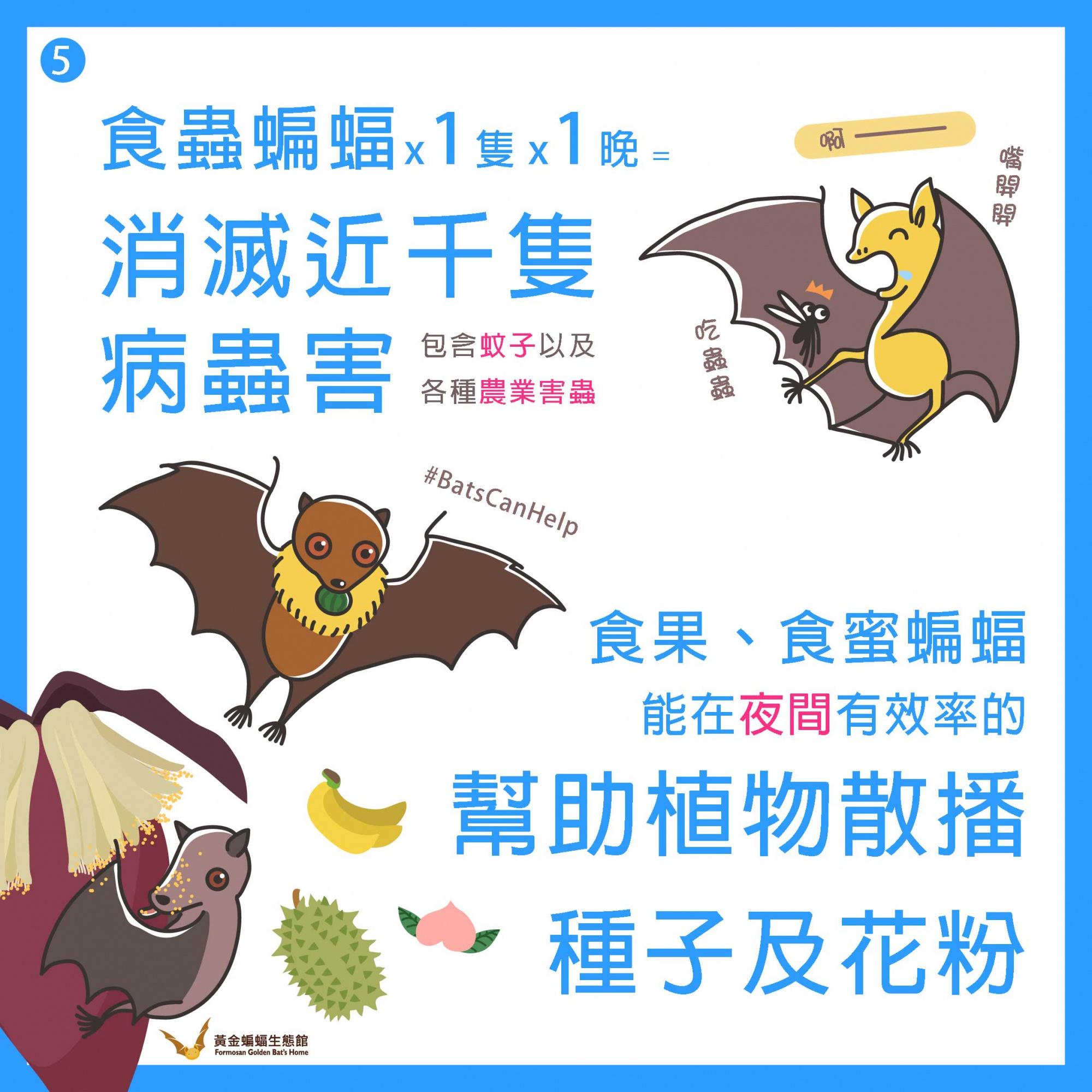 懶人包2 (6).jpg