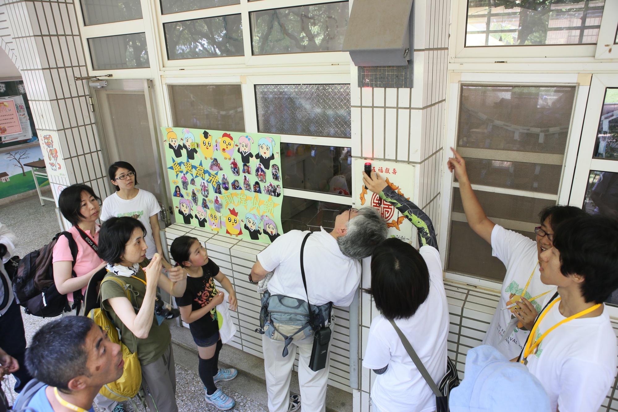 台灣最近距離的高頭蝠觀察地點在哪裡? 在黃金蝙蝠生態館,連日本團客也過來賞蝠