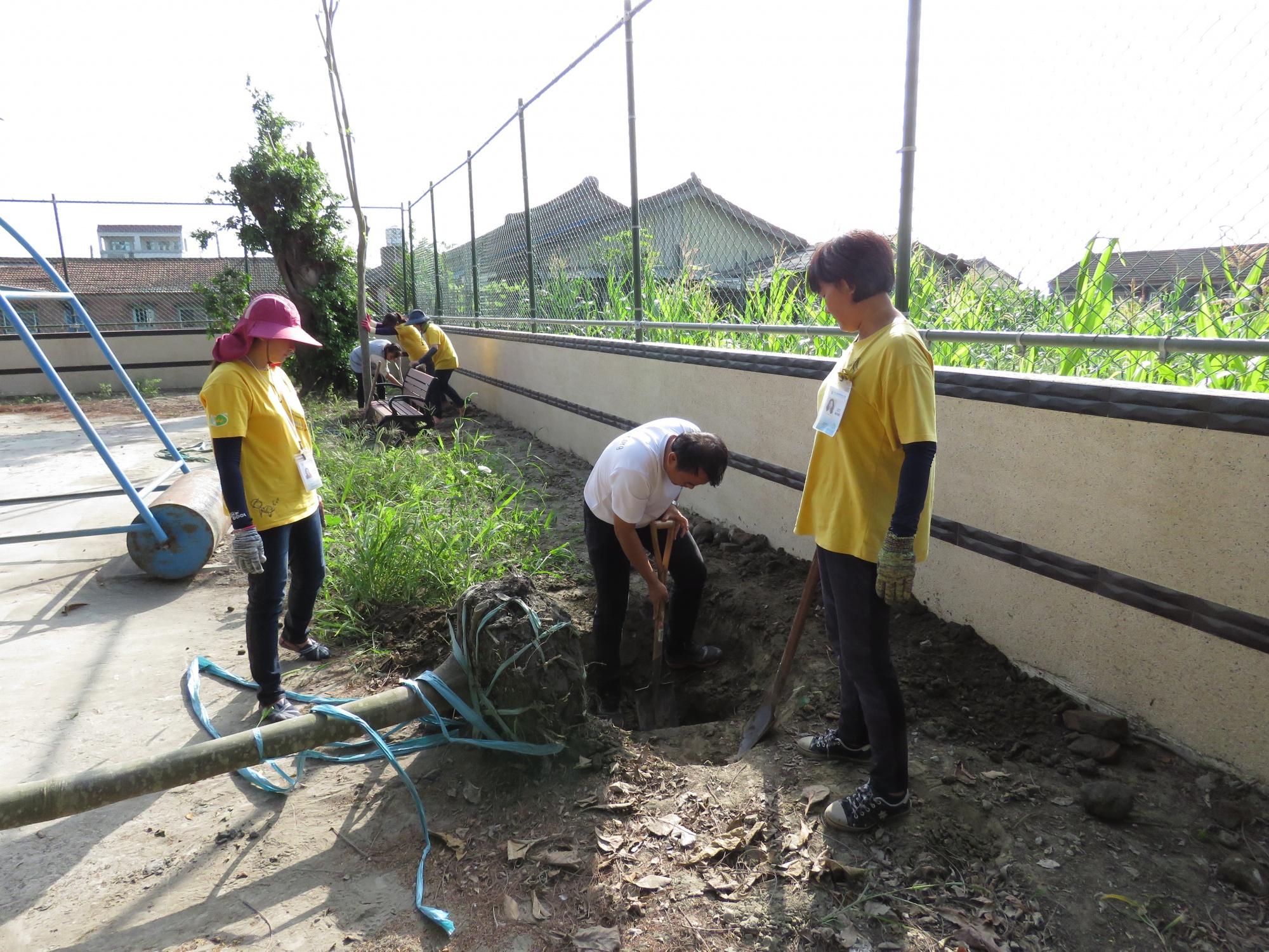 本館人員和學校志工正在種植黃金蝙蝠的棲樹