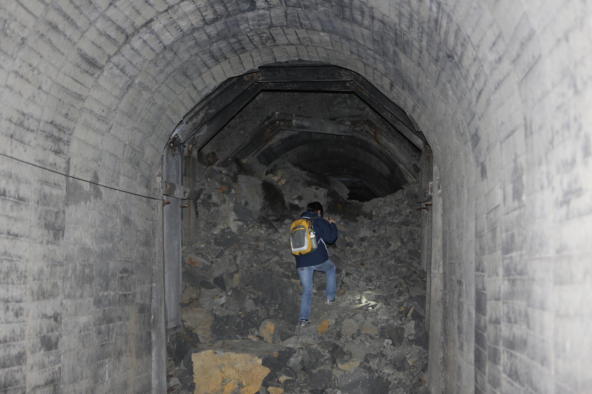 崩塌的冬眠洞穴無法繼續提供金黃鼠耳蝠使用,也難以維護