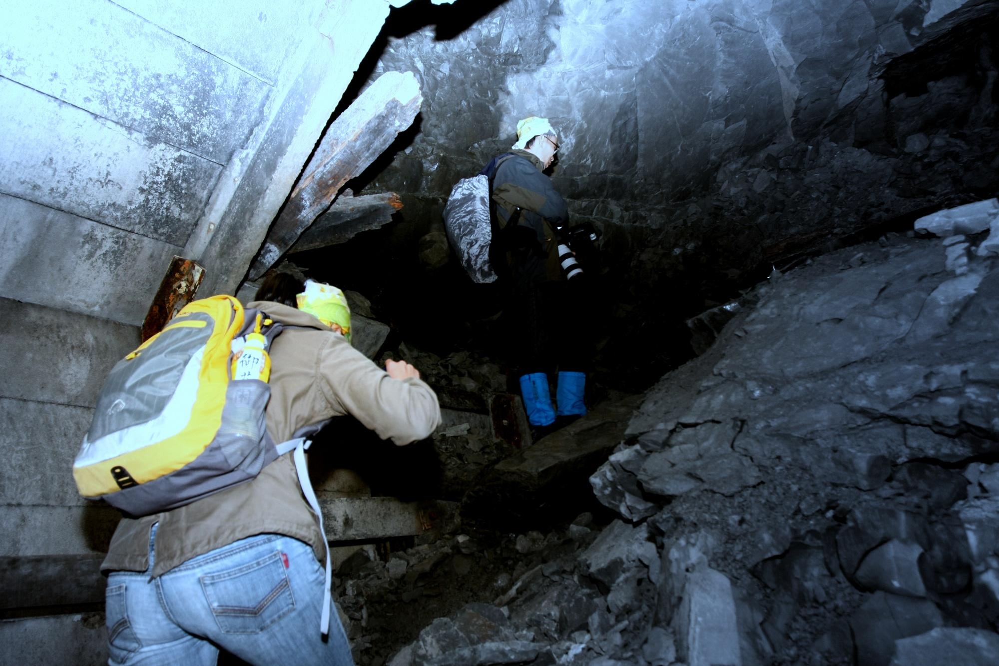 金黃鼠耳蝠的冬眠洞穴會崩塌非常不容易調查