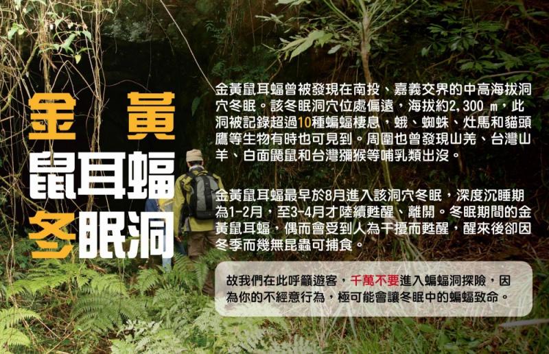poster_0_0.jpg